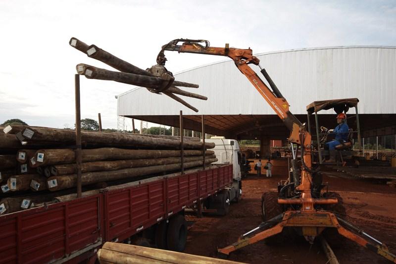 El gobernador Valdés se reúne mañana con el sector forestoindustrial