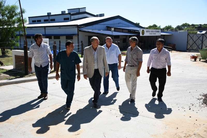 La Municipalidad y la Facultad de Veterinarias elaboran acciones en conjunto para tratar la problemática de equinos