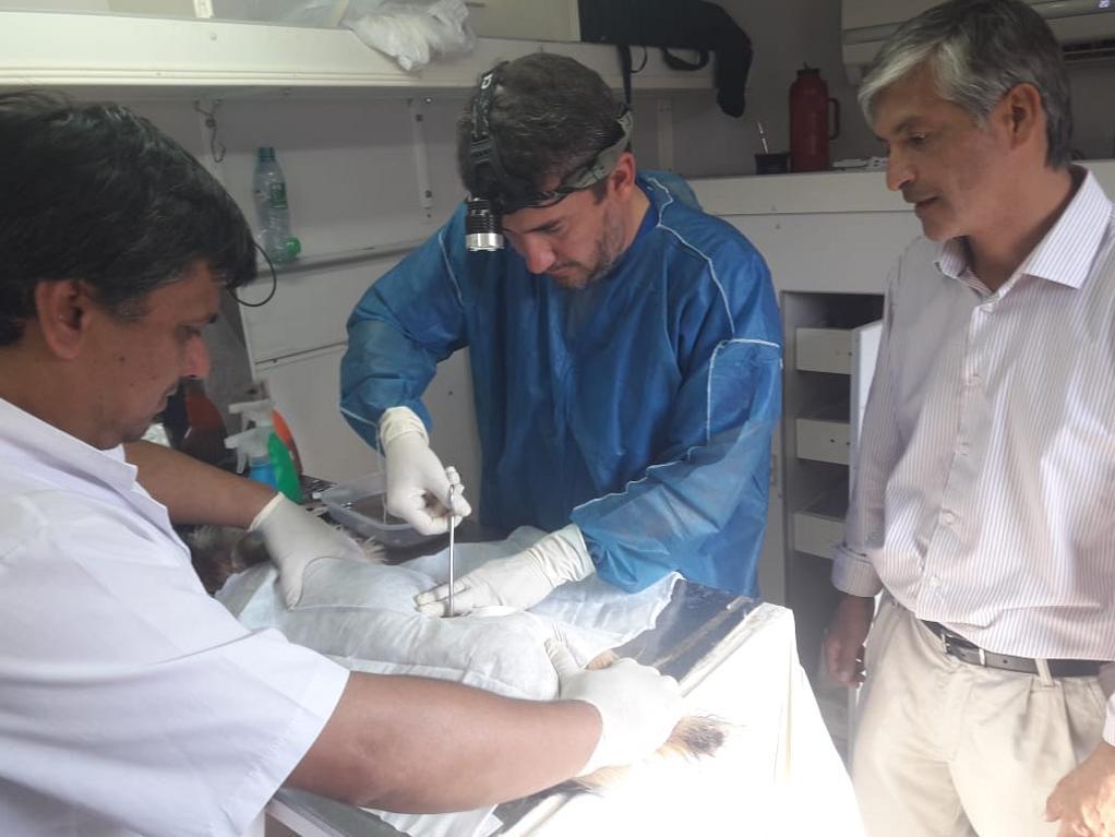 Con éxito, el programa Mascotas Saludables llegó al Laguna Brava