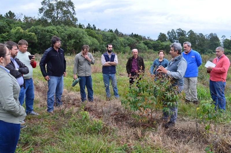 En Virasoro, recorridas a campo y exposiciones de programas forestales que ejecuta la Provincia