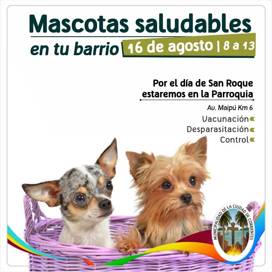 Mascotas Saludables, este jueves, en los barrios San Roque y Güemes