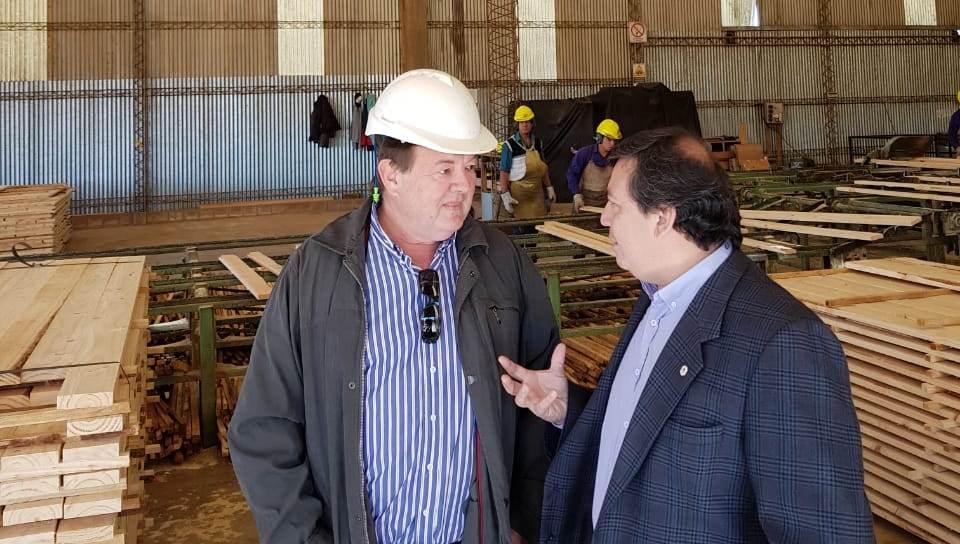 """Benitez. """"Estamos en permanente contacto con los forestoindustriales para aumentar el agregado de valor a la madera"""""""