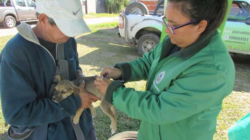 Salud Pública realizó un operativo integral en el barrio Loma Alta