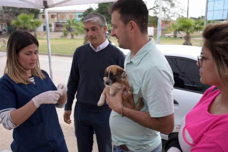 El programa Mascotas Saludables llegó al barrio La Olla