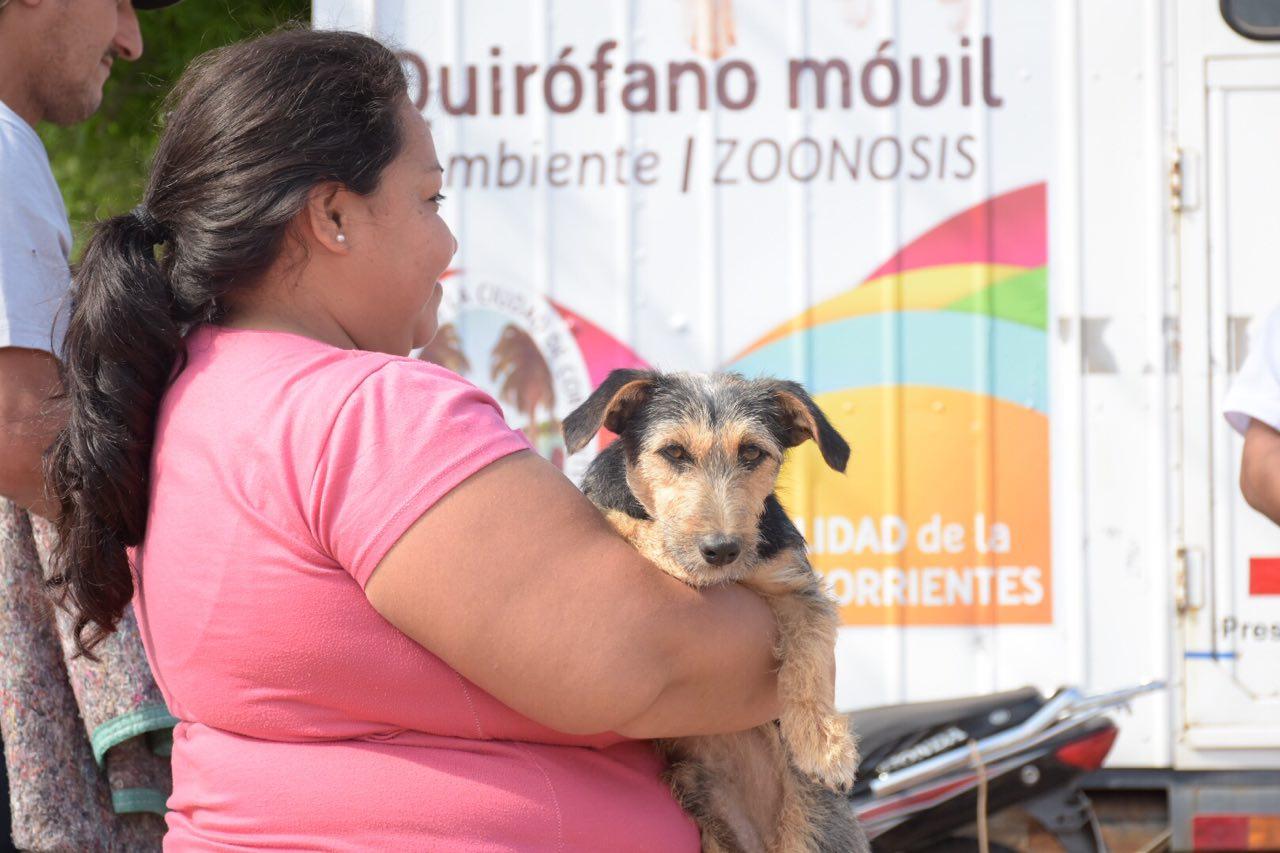 Mascotas Saludables: gran participación vecinal en un nuevo operativo