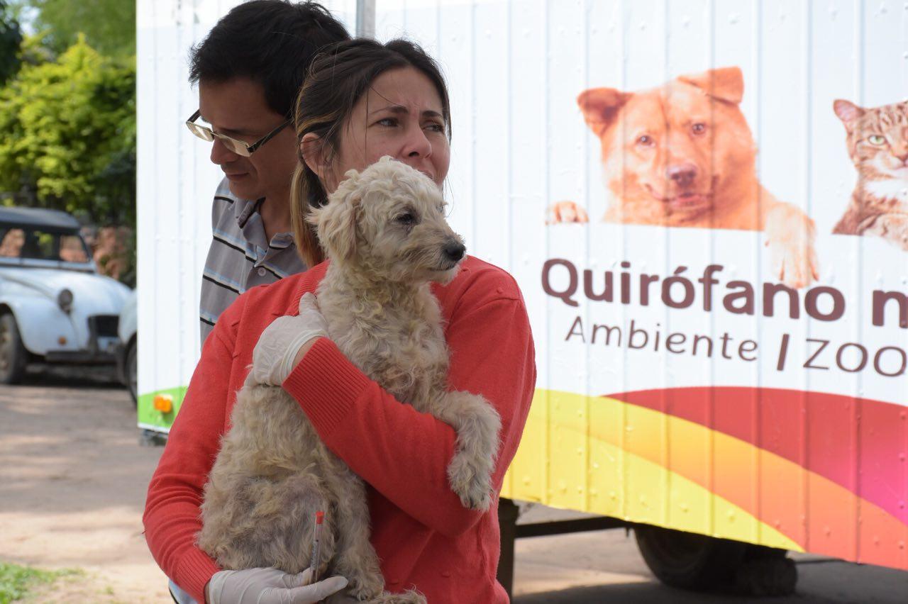 Este lunes Mascotas Saludables llegará al barrio Santa Rita