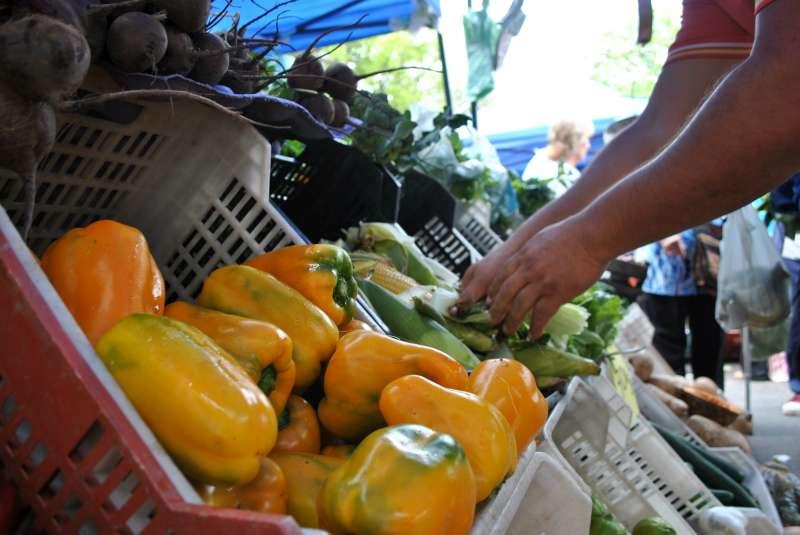 Llega la primera Feria Itinerante de Mercados Populares a las Mil Viviendas