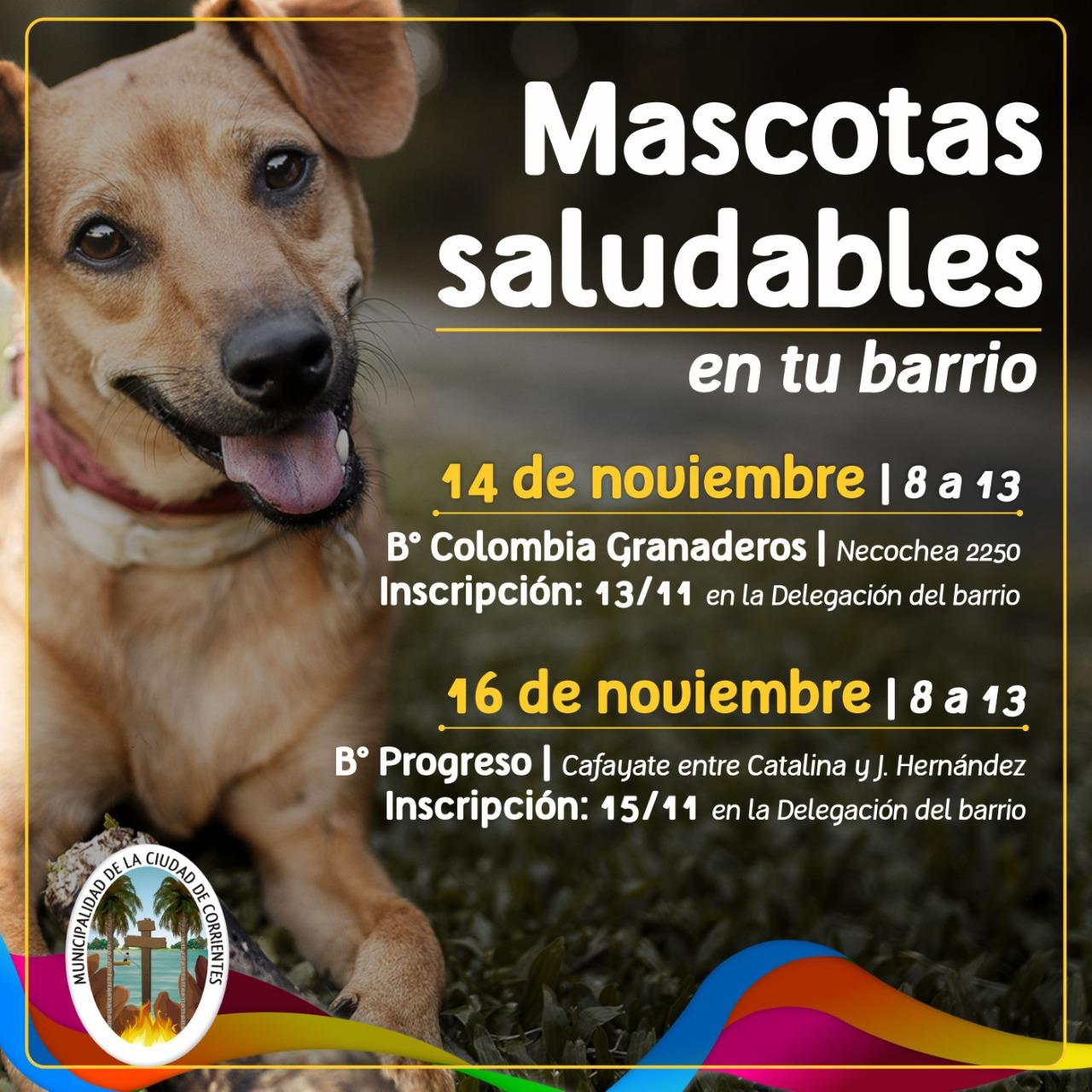 El programa Mascotas Saludables en los barrios Colombia Granaderos y Progreso