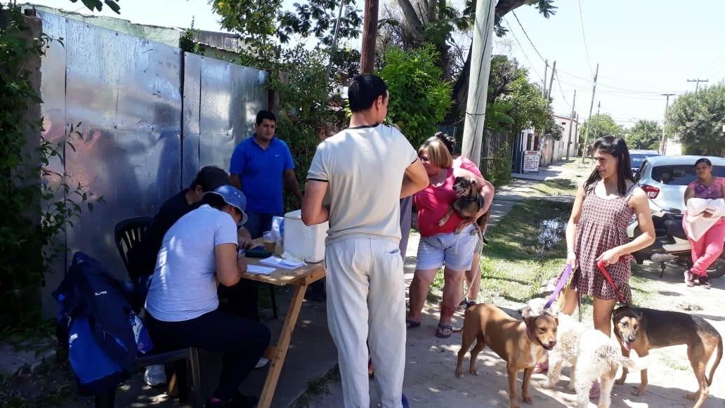 Mascotas Saludables, este viernes, en Laguna Seca