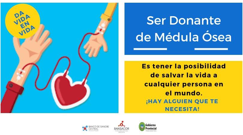 Se realizarán dos actividades el Día Nacional del Donante de Médula Ósea