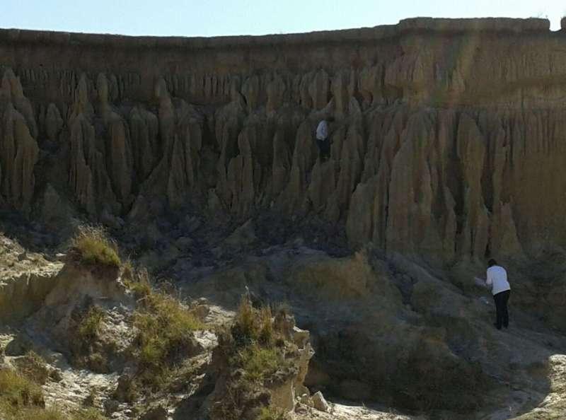 Mediante estudio de microfósiles, reconstruyen cómo se formaron ambientes de la provincia de Corrientes