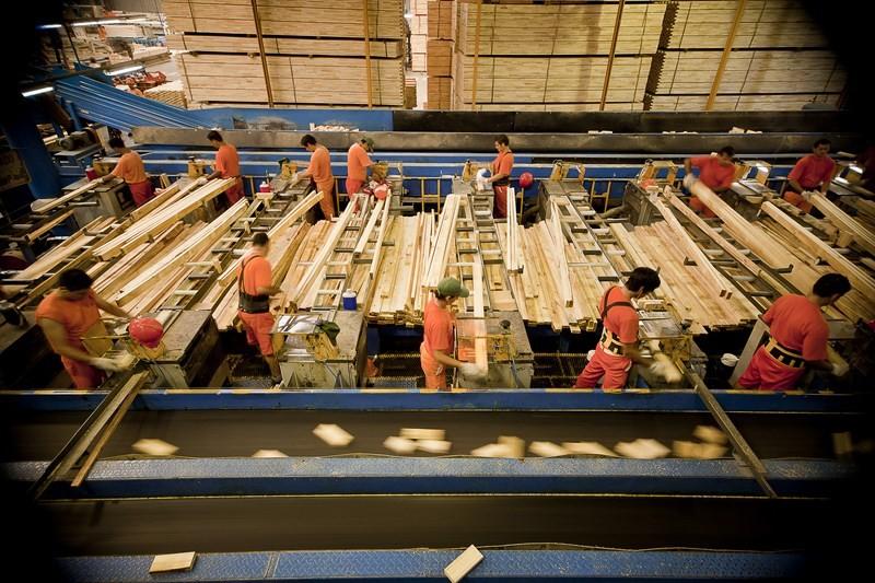 El sector foresto industrial de Corrientes se  prepara para incrementar sus exportaciones