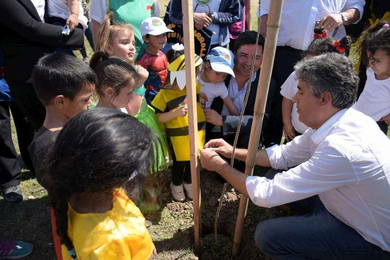 La Municipalidad continúa con la campaña de plantación de arboles por la Ciudad