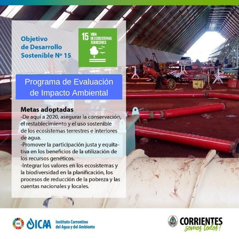 El ICAA evaluó más de 180 proyectos en el primer semestre de 2019