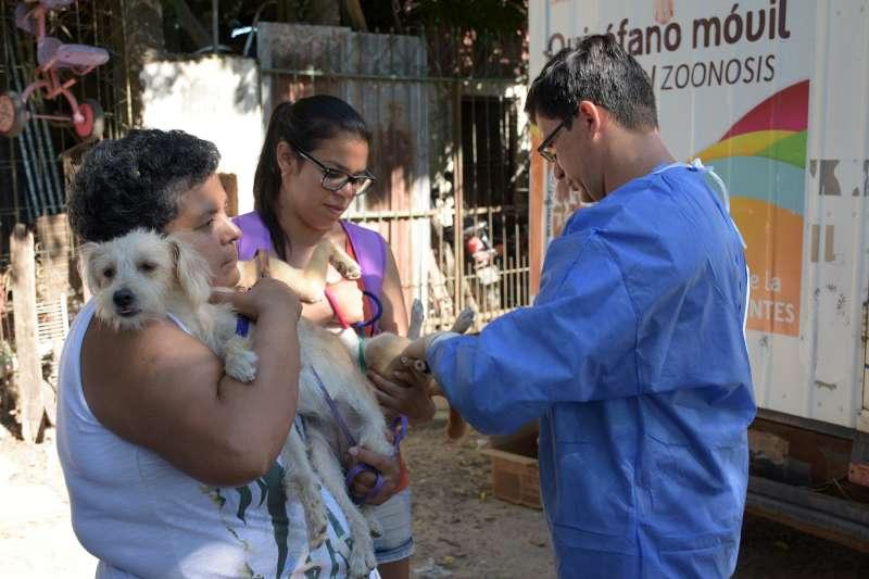 El programa Mascotas saludables llega este miércoles al barrio Antártida Argentina