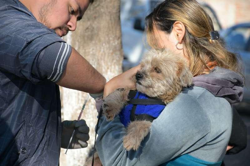 Mascotas Saludables llega a los barrios Doctor Montaña y Sapucay