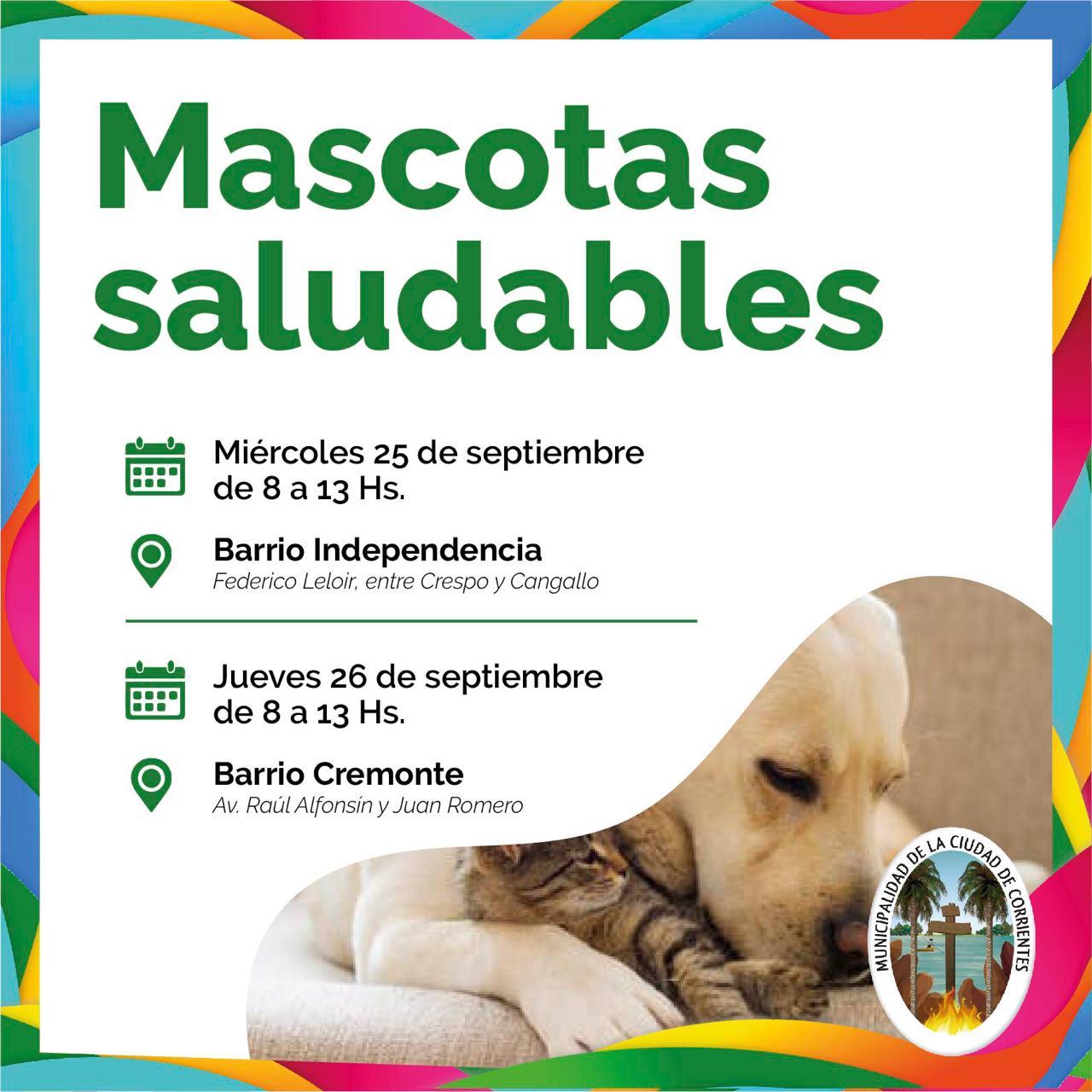 Mascotas Saludables llega a los barrios Independencia, Cremonte y Bañado Norte