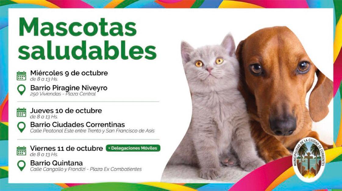 Mascotas Saludables llega esta semana a cuatro barrios de la Ciudad