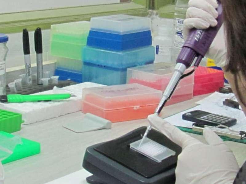 Asignan 126 becas para jóvenes investigadores de la UNNE