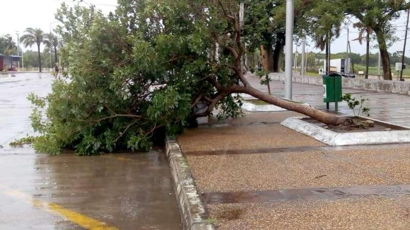 El Municipio trabaja en diferentes zonas afectadas por el temporal