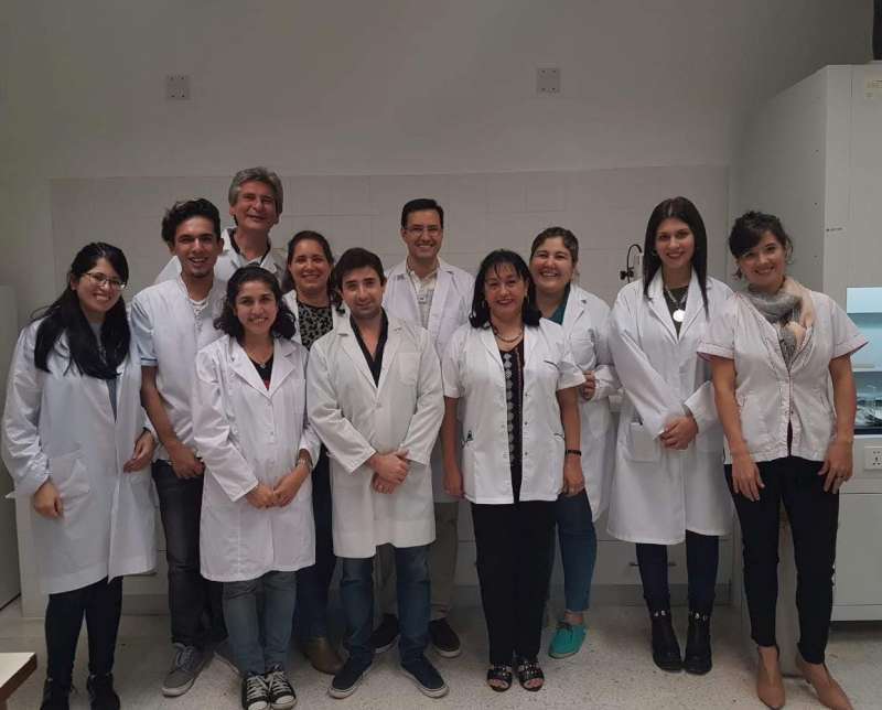Estudian el rol de las proteínas para evaluar la progresión tumoral