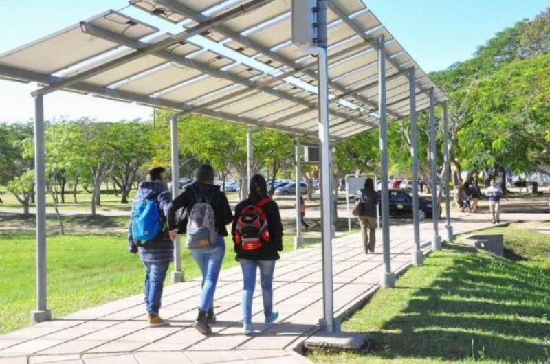 Buen rendimiento de una pérgola fotovoltaica instalada con fines demostrativos
