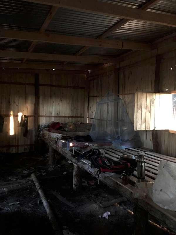 El RENATRE detectó indicios de explotación laboral en 176 trabajadores forestales de Corrientes