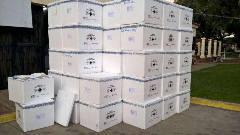 El Ministro Cardozo confirmó que llegaron las vacunas antigripales a la Provincia