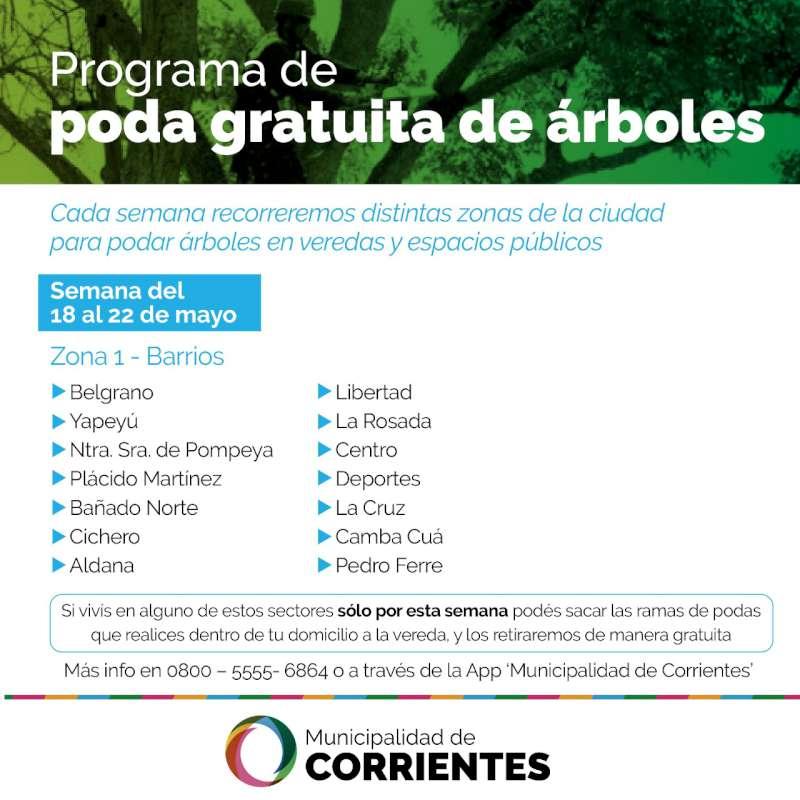 Este lunes comienza el Programa de Poda de Árboles de la Municipalidad