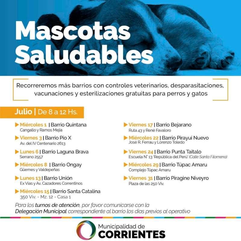 Las atenciones gratuitas a mascotas se realizarán en los barrios Laguna Brava y Ongay