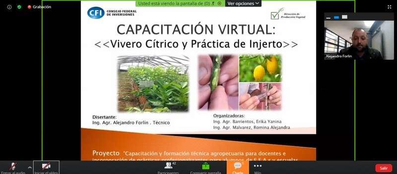 """""""Vivero Cítrico y Práctica de Injerto"""""""