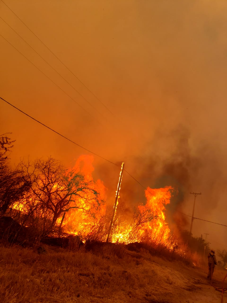 """""""Ya se contabilizan 700 mil hectáreas quemadas en la provincia"""""""