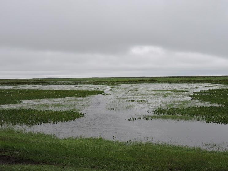 Webinar. Corrientes expondrá su oferta turística