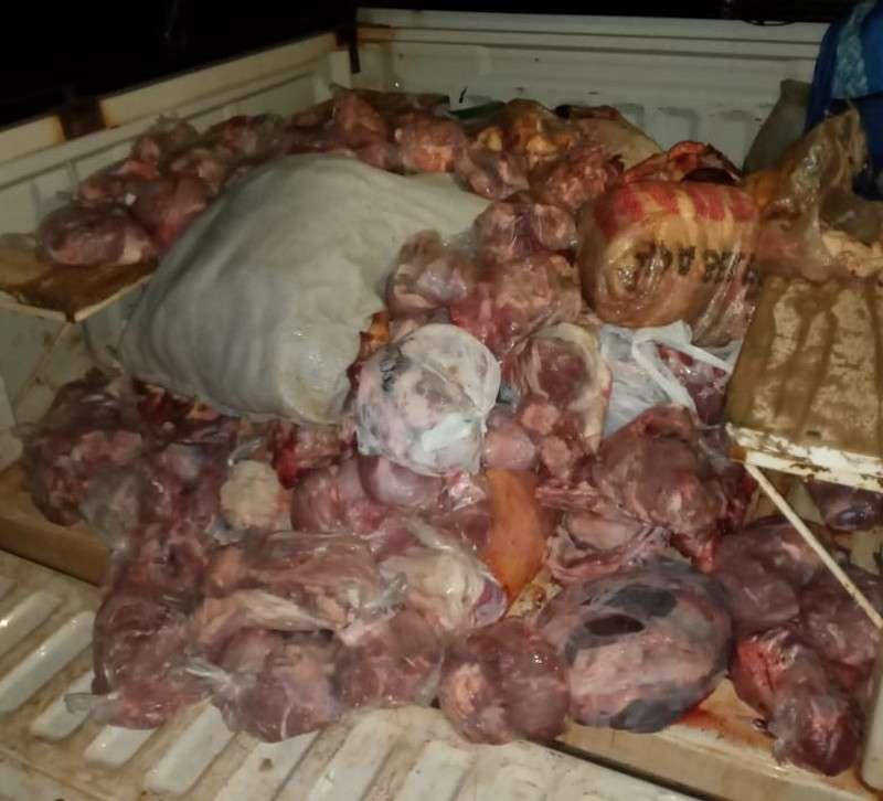 Procedimientos contra la faena clandestina en Garaví y Santo Tomé