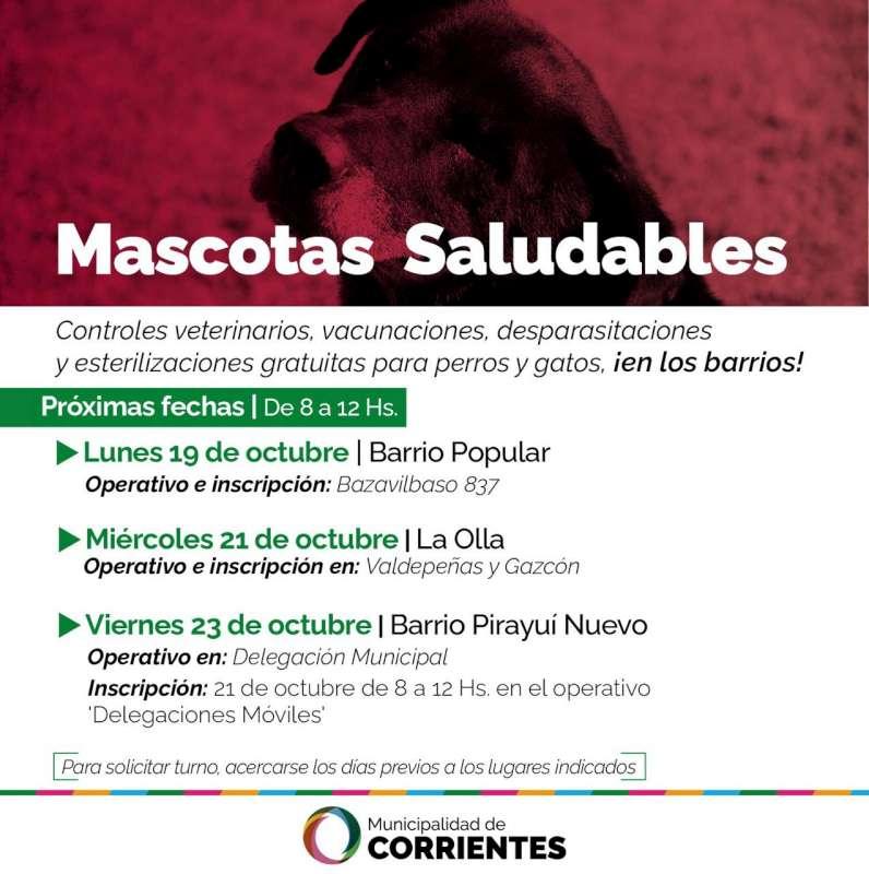 El operativo de Mascotas Saludables estará en los barrios Popular, La Olla y Pirayuí