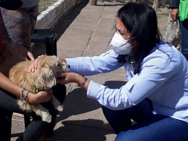 Provincia y Municipio junto a las mascotas continúan con operativos barriales