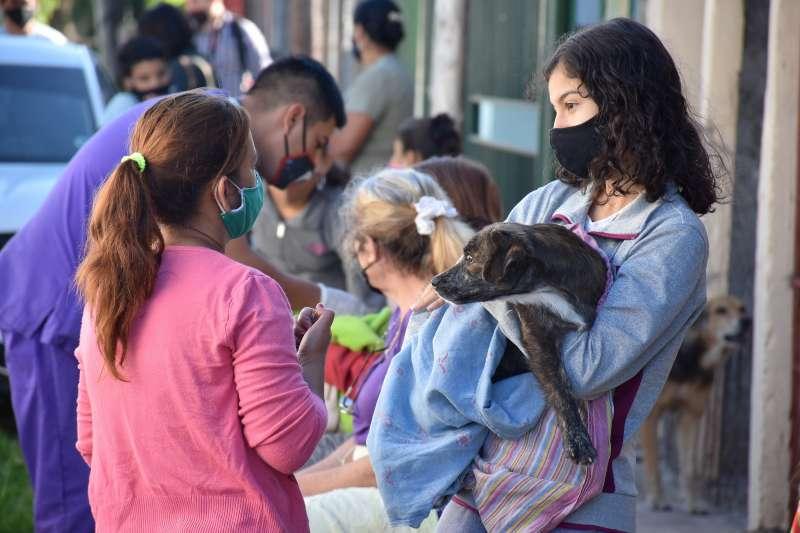 Mascotas Saludables: Tassano, en el barrio La Chola