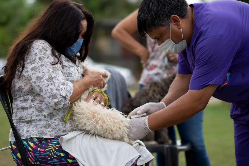 Mascotas Saludables. Tassano, con los vecinos del barrio San Antonio Oeste