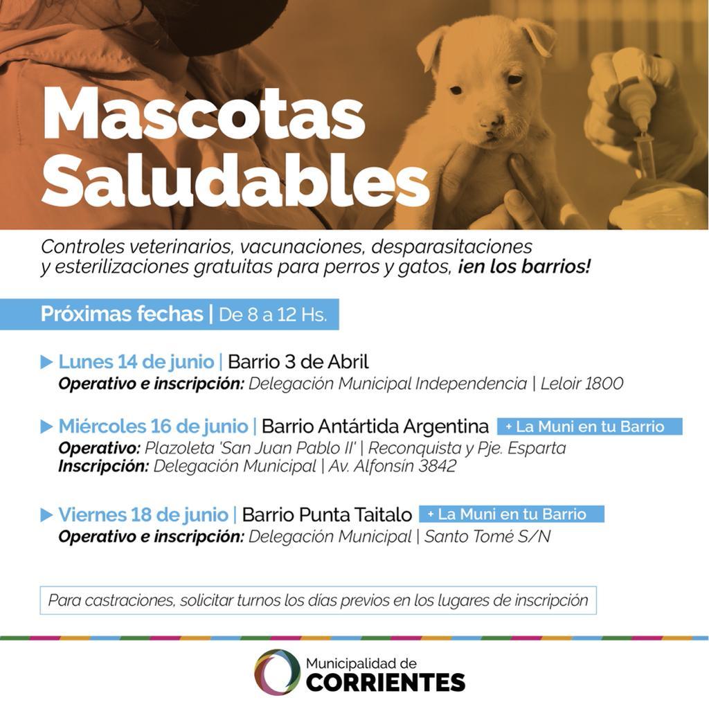 Las atenciones veterinarias gratuitas se brindarán en los barrios 3 de Abril, Antártida Argentina y Punta Taitalo