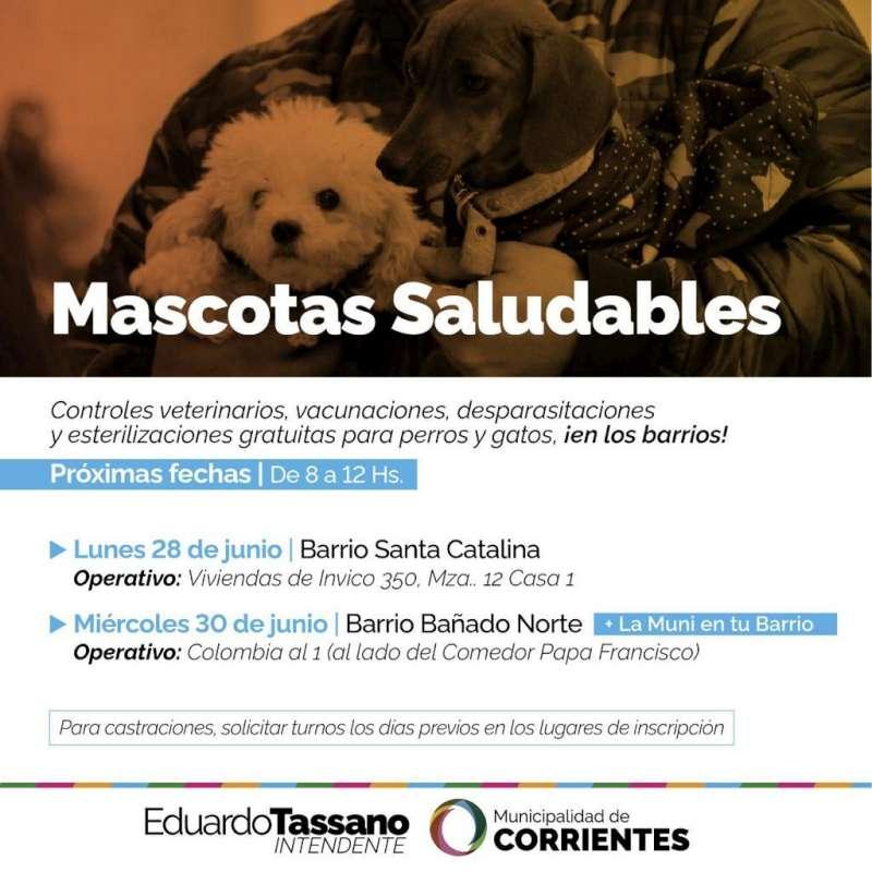 Mascotas Saludables estará en los barrios Santa Catalina y Bañado Norte