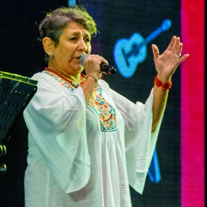Festival de Invierno del Chamamé del 20 al 22 de agosto