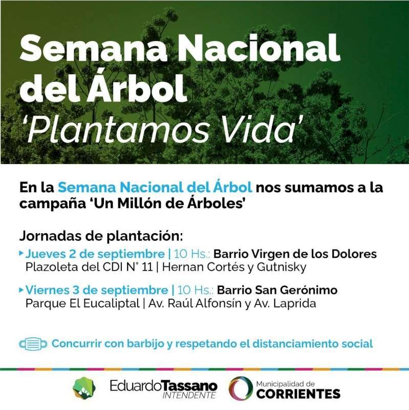 La Municipalidad celebra la Semana Nacional del Árbol con la plantación de distintas especies